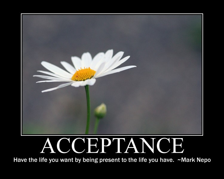 Happiness & Acceptance | The Ministry of Happiness