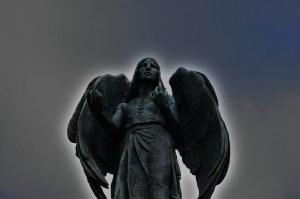 angel fix