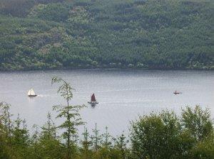 Flotilla with Viking boat trailing