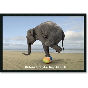 life-balance-elephant1
