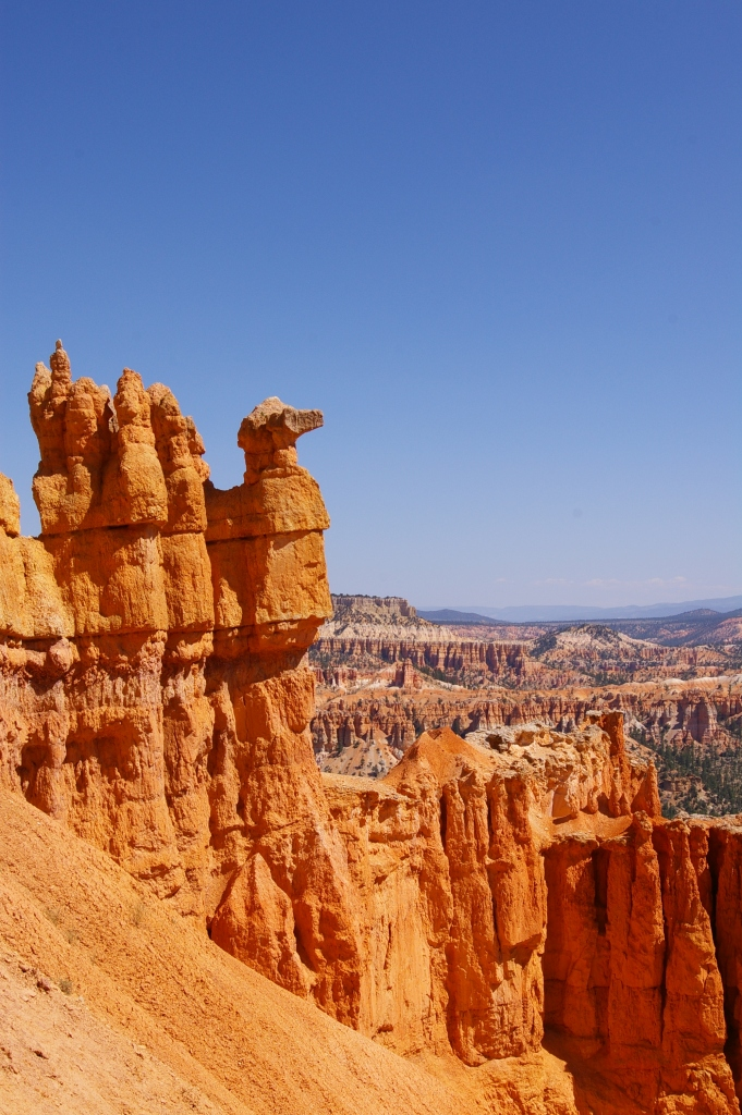 travel, happiness, bryce
