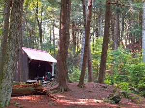 Brassie Brook Shelter