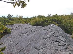 humpback rock