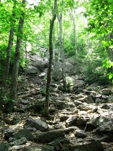 trails 2