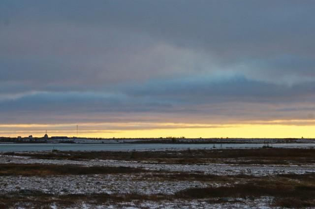 fix tundra morning