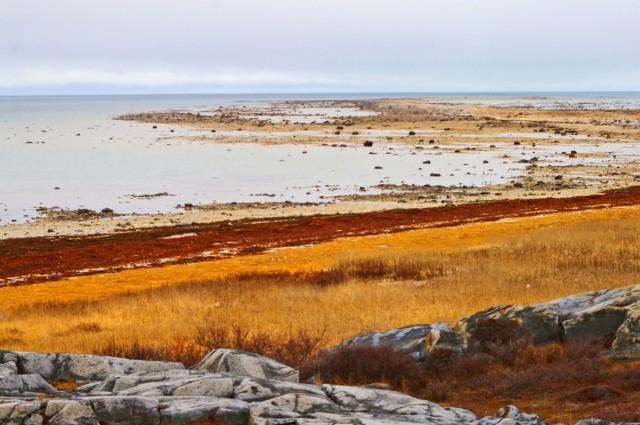 fix beach landscape