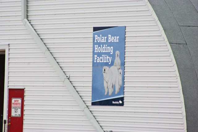fix polar bear jail