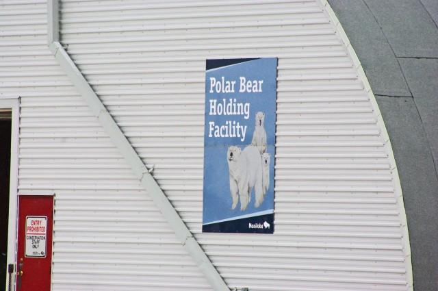 fix polar bear jail