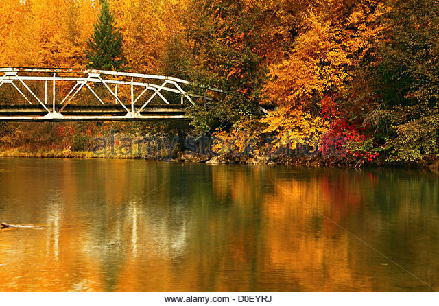 fall-color-and-a-railroad-bridge-over-the-yakama-river-in-the-wenatchee-d0eyrj