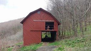 hiking, happiness, appalachian trail