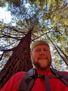 hike, hiking, armstrong woods