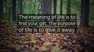 meaning of life, learning, happiness