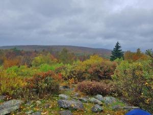 Warner Hill, Appalachian Trail, happiness