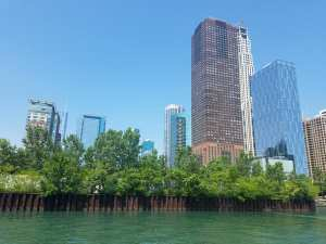 architectural boat tour, chicago