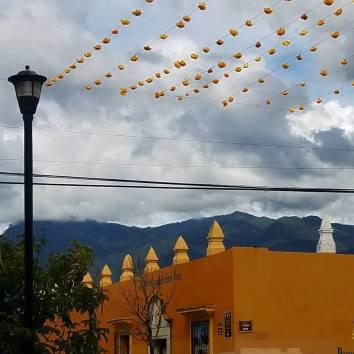 marigold streets 2
