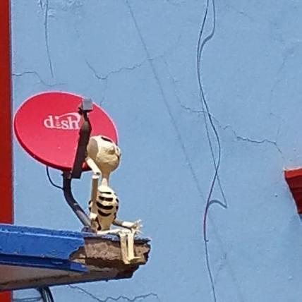 skeleton dish satellite