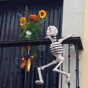 skeleton hang on