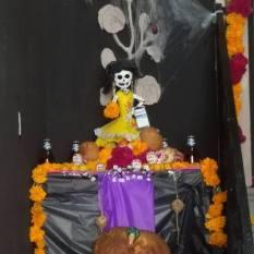 x skeleton offerenda 2