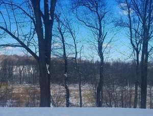 snow, winter, photography